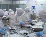 Thiếu nguyên liệu trầm trọng, nhà máy hải sản hoạt động cầm chừng