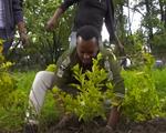 Trải nghiệm nhịp sống vỉa hè sôi động tại Ethiopia - ảnh 1