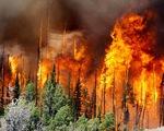 Nga tuyên bố tình trạng khẩn cấp về cháy rừng