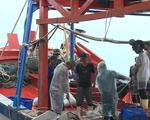 Chưa thể hoàn thành lắp đặt thiết bị giám sát hành trình cho tàu cá