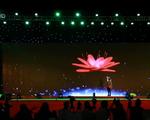 Ảo thuật gia Nguyễn Phương tái lập kỷ lục thế giới