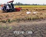 Cảnh báo nắng nóng và khô hạn ở Trung Bộ