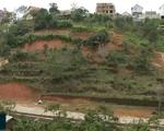 Chấn chỉnh tình trạng phân lô bán nền đất nông nghiệp