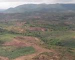 Lúng túng giải quyết tình trạng 'xã hội đen' chiếm đất rừng