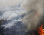 Indonesia nỗ lực chống cháy rừng