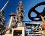 Vì sao giá dầu liên tục tăng? - ảnh 1