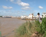 Nuôi thủy sản mùa lũ gặp khó vì lũ thấp