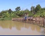 Thủy điện A Vương và Đắk Mi 4 xả nước đẩy mặn cho Đà Nẵng