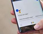 Apple và Google dừng thẩm định các cuộc hội thoại giữa người dùng và trợ lý ảo