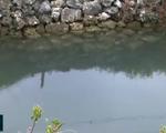 Ám ảnh tai nạn chết người tại những 'hố nước tử thần' ở vùng đìa nuôi thủy sản