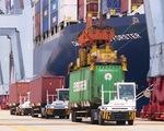 Giấy chứng nhận xuất xứ hàng hóa giả: Rủi ro với hàng xuất khẩu Việt Nam