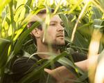 Nông dân Mỹ kiếm tiền từ YouTube nhiều hơn trên đồng ruộng