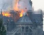 Nhiễm độc chì nghiêm trọng xung quanh Nhà thờ Đức Bà Paris