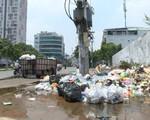 Những bãi rác tự phát ở TP.HCM