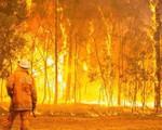 Hơn 100 đám cháy rừng ở Australia nguy cơ vượt kiểm soát