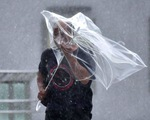 Siêu bão Faxai càn quét Nhật Bản: Giao thông tê liệt, nhiều công trình hư hỏng
