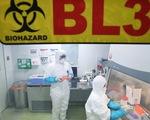 WHO: Virus viêm phổi lạ không lây từ người sang người