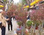 Nồng nàn vị Tết ở chợ hoa lâu đời nhất Hà Nội