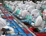 Xuất khẩu thủy sản phấn đấu đạt 9 tỷ USD