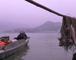 Trung Quốc chính thức cấm đánh bắt cá ở sông Dương Tử trong 10 năm