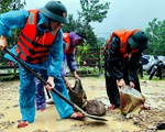 Khắc phục hậu quả mưa lũ tại miền Trung