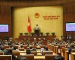 [INFOGRAPHIC] Kỳ họp thứ 10 Quốc hội khóa XIV thông qua 7 Luật, 13 Nghị quyết - ảnh 3