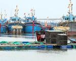 Ứng phó với bão số 12, nhiều tỉnh thành cấm biển