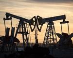 IEA hạ dự báo nhu cầu dầu năm 2021 - ảnh 2