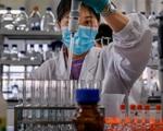 """Trung Quốc sẽ tiêm chủng vaccine COVID-19 cho 50 triệu người trước """"Xuân vận"""""""