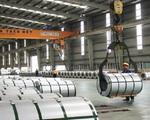 Áp thuế chống bán phá giá với thép cán nguội Trung Quốc