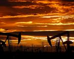 Giá dầu diễn biến thế nào trong năm 2021?