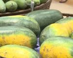 DN logistics giảm chi phí lưu kho, hỗ trợ tiêu thụ nông sản