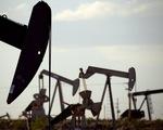 Giá dầu châu Á đi xuống phiên 17/2 - ảnh 1