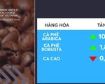 Giá cà phê tăng đột biến