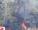 Khống chế vụ cháy rừng thông trên núi Đại Bình, Lâm Đồng - ảnh 1