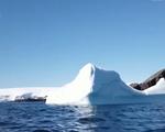 Nam Cực trải qua ngày nóng kỷ lục do biến đổi khí hậu