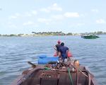 Xâm nhập mặn đạt đỉnh, người dân ĐBSCL chủ động tích trữ nước ngọt