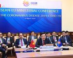 ASEAN nỗ lực hợp tác phòng chống dịch COVID-19 - ảnh 1