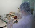 TP.HCM xử phạt đến 30 triệu đồng hành vi vi phạm phòng, chống dịch COVID-19 - ảnh 1