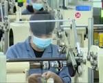 Doanh nghiệp dệt may, da giày đi tìm nguồn cung nguyên liệu thay thế