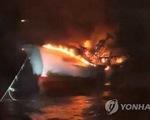 Vụ 5 thuyền viên mất tích ở Hàn Quốc: Sẵn sàng các biện pháp bảo hộ công dân cần thiết