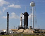 Mỹ: NASA ấn định ngày phóng tàu vũ trụ Crew Dragon