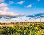 Lượng khí thải CO2 trên toàn cầu giảm mạnh