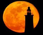 Ngày 27/4, người dân ở nhiều nước chiêm ngưỡng siêu trăng hồng kỳ ảo - ảnh 3