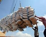 Doanh nghiệp đăng ký xuất hơn 65.500 tấn gạo