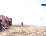 Cháy bãi rác gây ô nhiễm khói dày đặc, thiêu rụi nhiều diện tích cây ăn quả