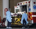 COVID-19 có thể làm tăng số người Mỹ tử vong do tự tử và nghiện ngập