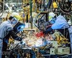 Hậu COVID-19, kinh tế thế giới quay trở lại đường băng cũ theo mô hình nào? - ảnh 3