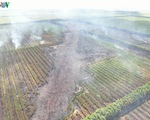 Liên tiếp xảy ra cháy rừng lớn tại Kiên Giang