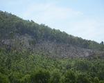 Khống chế đám cháy rừng ở núi Sọ, khoảng 10 ha rừng bị thiêu rụi